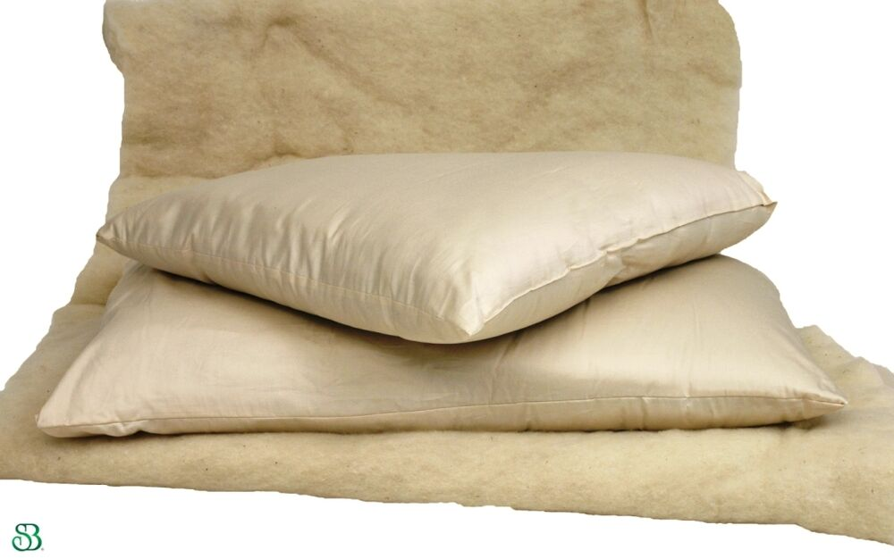 Image Result For Organic Cotton Bed Pillows