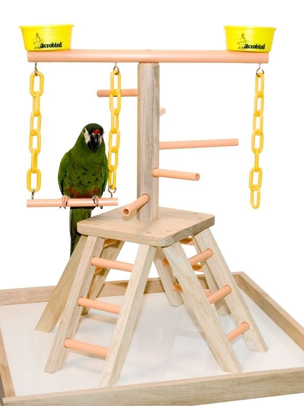 Parrot Perch Pet Bird Play Stand Table Top Perch Play Gym