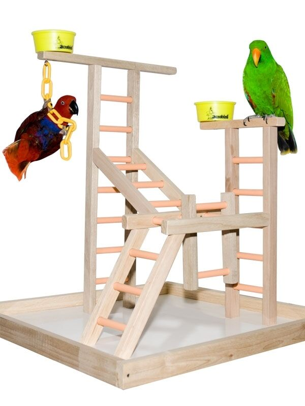 Parrot Perch Pet Bird Perch Play Gym Stand Table Top