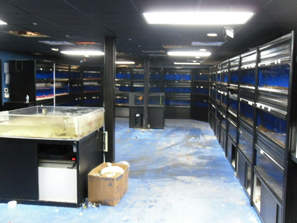 Aquatic system casco group aquarium system 45 tank for Fish and pet store