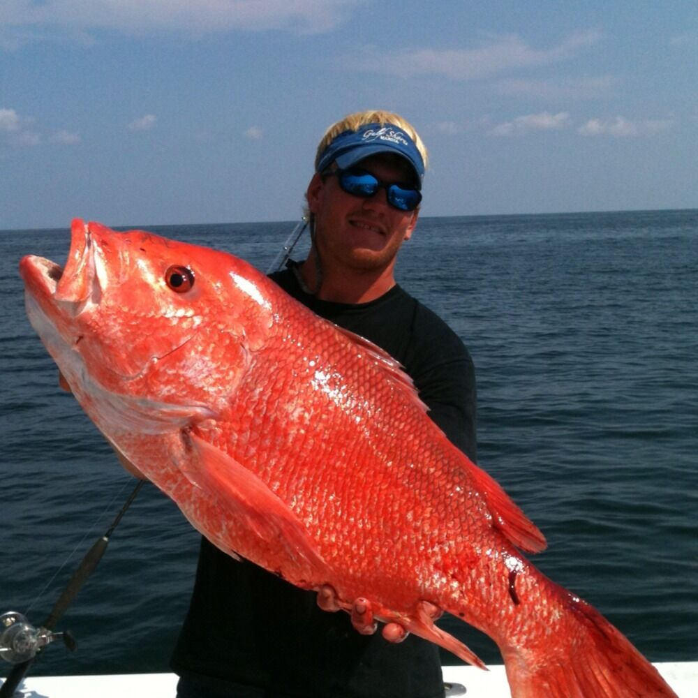 deep sea fishing gulf shores alabama booking spring
