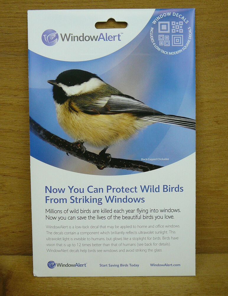 Window Alert Modern Square Decals Protect Wild Birds Prevent - Invisible window decals for birds