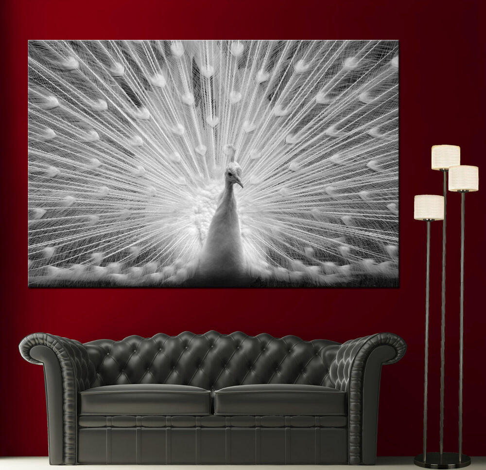 Canvas Giclee Prints Wall Art Peacock Photo Black White