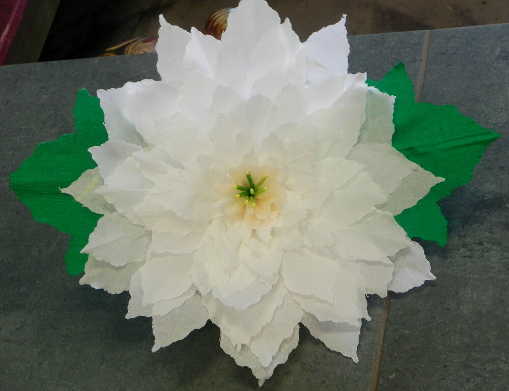 X large crepe paper flower white poinsettia 13 diameter for Crepe paper wall flowers