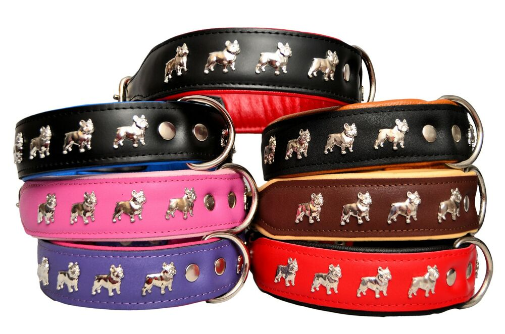Real Leather Dog Collars French Bulldog Amp Other Large