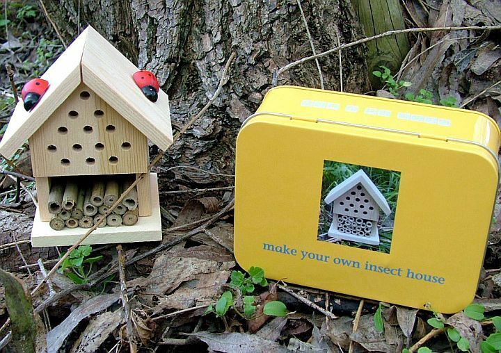 Make Build Your Own Insect House Gift In A Tin Wooden