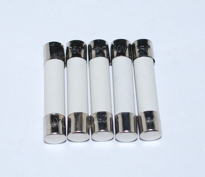5 Fast Blow Ceramic Fuses 10a 10 Amps 110 250v 6x30 Us