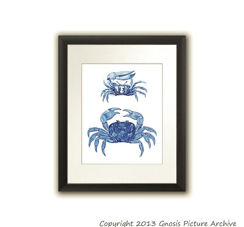 Beach Coastal Wall Decor : Blue crab art decor print no beach wall