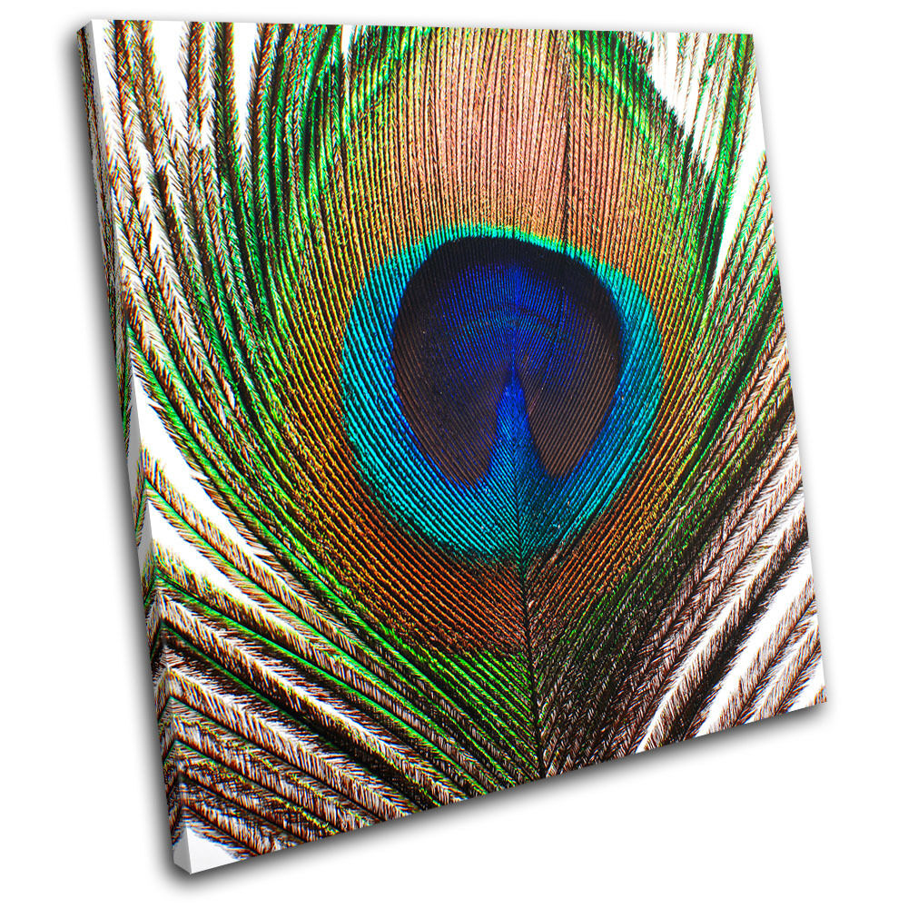 Peacock feather animals single canvas wall art picture for Peacock wall art