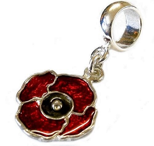 Sterling Silver Enamelled Poppy Dangle Bead Charm Ebay