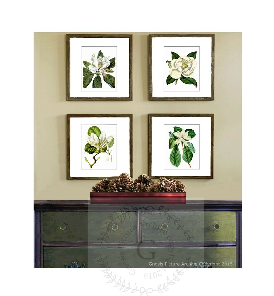 Botanical wall hanging set of 4 white magnolia southern for White wall decor