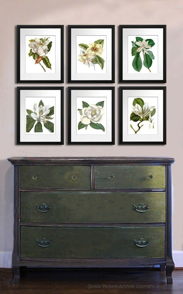 Magnolia Blossom Paintings Botanical Wall Art Prints Setof 6 Southern Home Decor Ebay