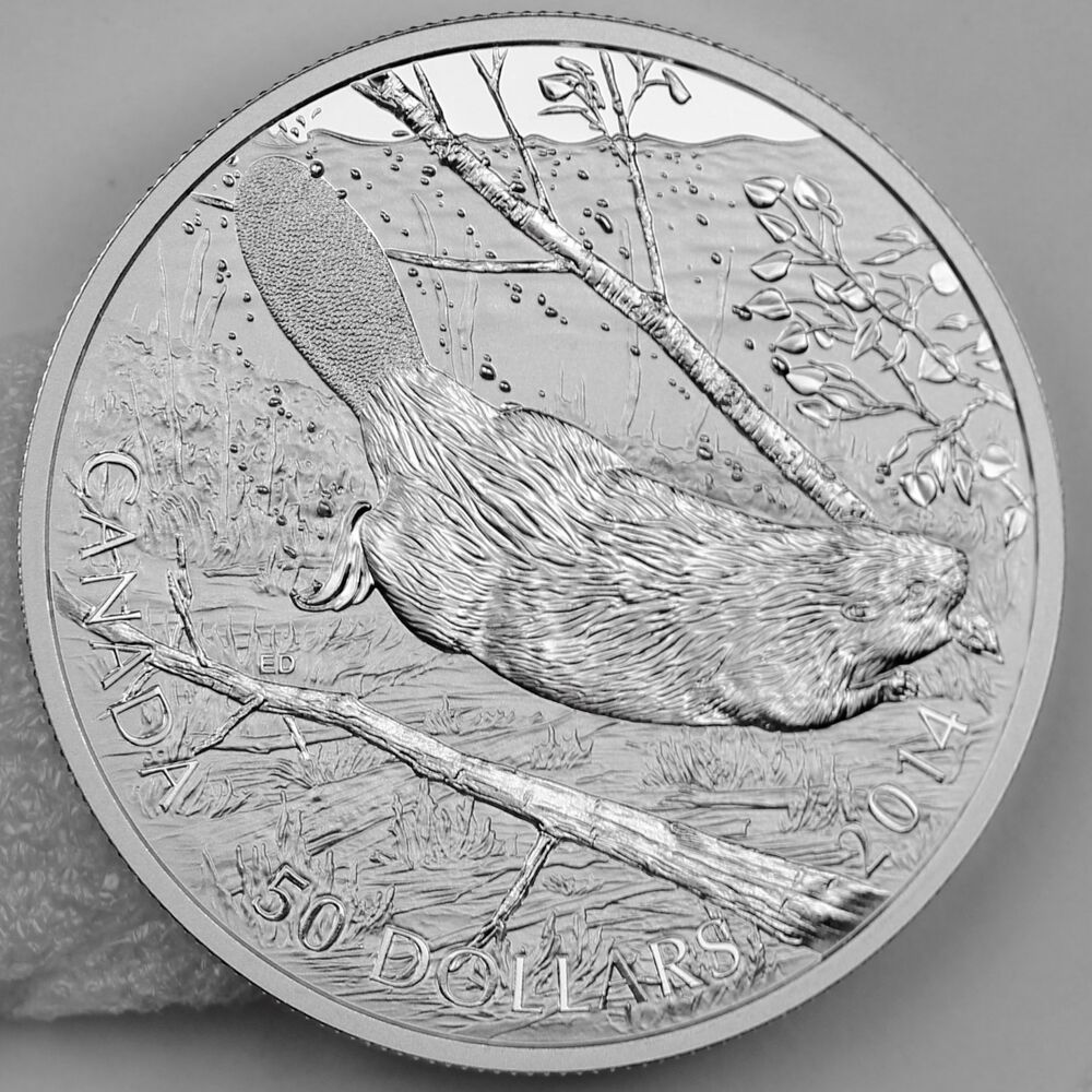 Canada 2014 50 Swimming Beaver 5 Troy Oz Pure Silver