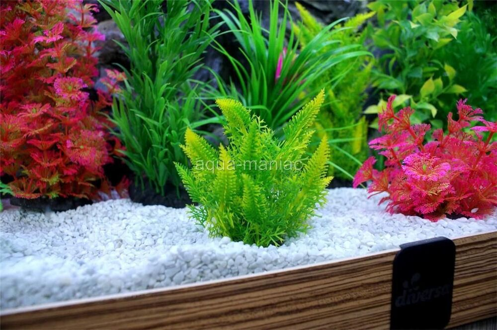 Aquarium fish tank natural white polished gravel 25kg 4 for Natural fish tank