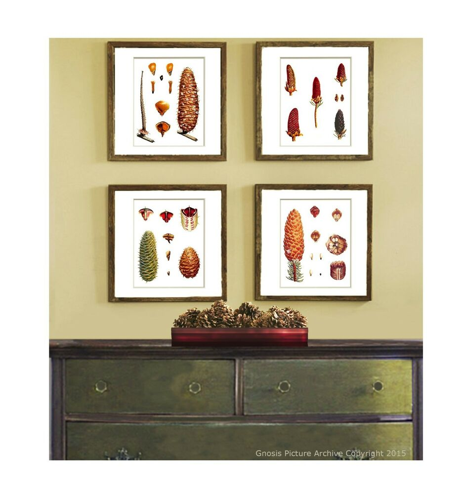 Pinecone decor set of 4 wall hanging forest brown christmas home decor art print ebay - Home decorated set ...