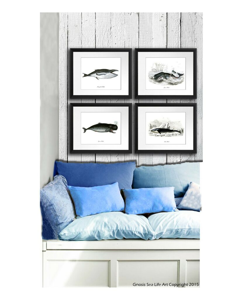 Vintage whale painting poster set of 4 wall hanging for Hanging room decor