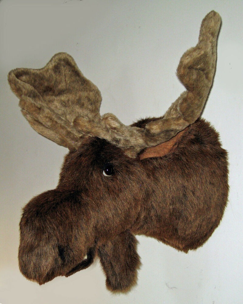 mounted moose head maine fair game hunt stuffed animal jack shoulder mount ebay. Black Bedroom Furniture Sets. Home Design Ideas
