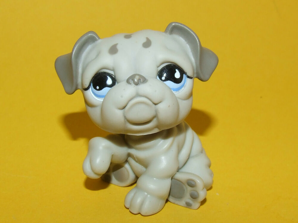 Littlest Pet Shop Lps Gray British Bulldog Puppy Dog 508 Ebay