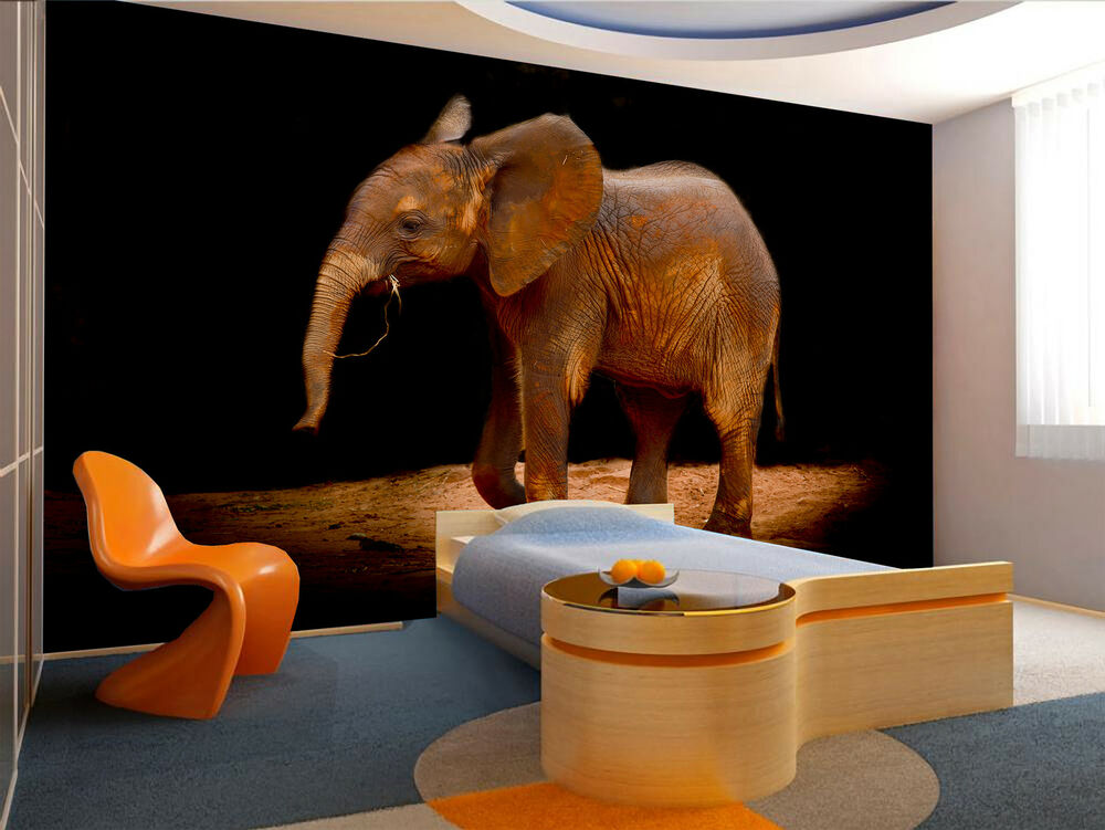 Baby elephant wall mural photo wallpaper giant wall decor for Elephant wall mural