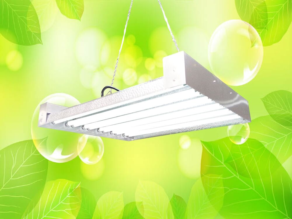 durolux t5 ho grow light 2 ft 12lamps dl8212 fluorescent. Black Bedroom Furniture Sets. Home Design Ideas