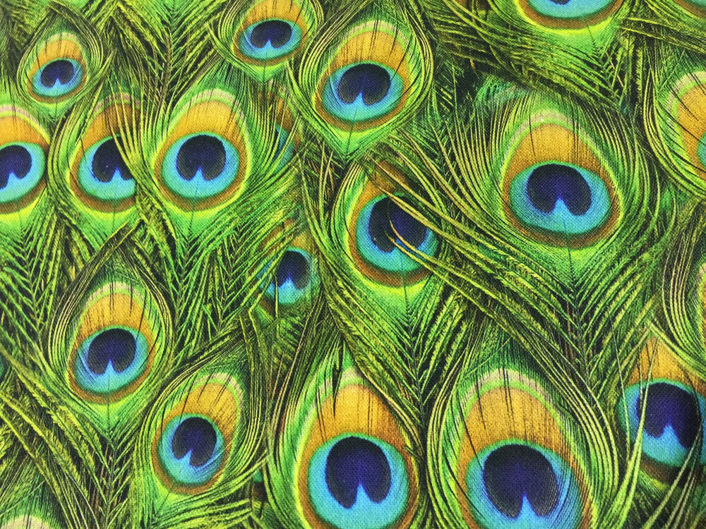Peacock Feathers Curtain Upholstery Cotton Fabric Material