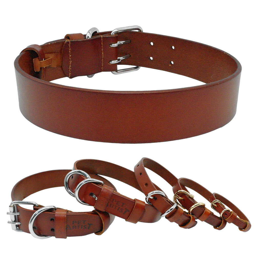 Heavy Duty Personalized Dog Collars