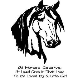 All Horses Deserve  at least once in their lives to be loved  wall vinyl decal