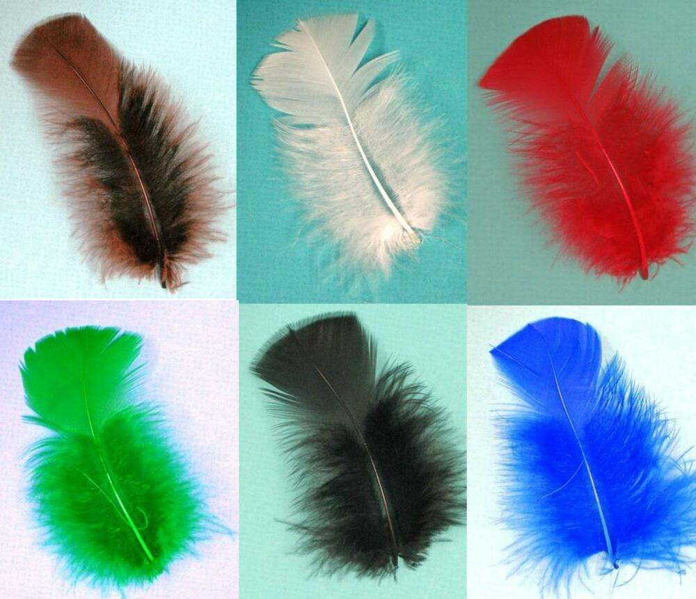 Turkey plumage 2 5 bag of 30 feathers many colors top for Where can i buy feathers for crafts