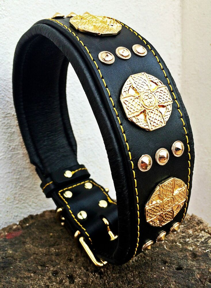 Bestia Studded Leather Collar 2 5 Inch Wide Rottweiler
