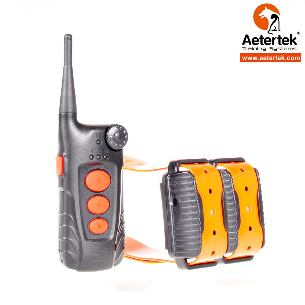 Shock Collar Training Hunting Dogs