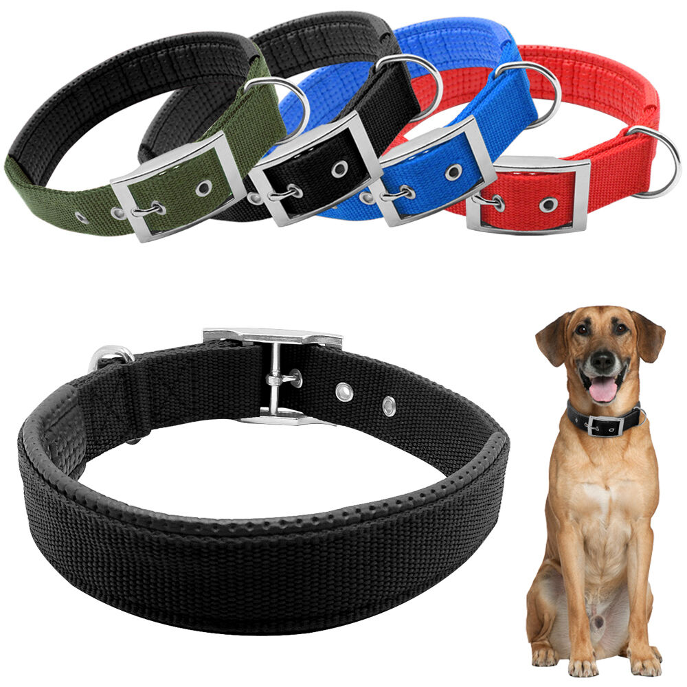 Nylon Collars For Large Dogs