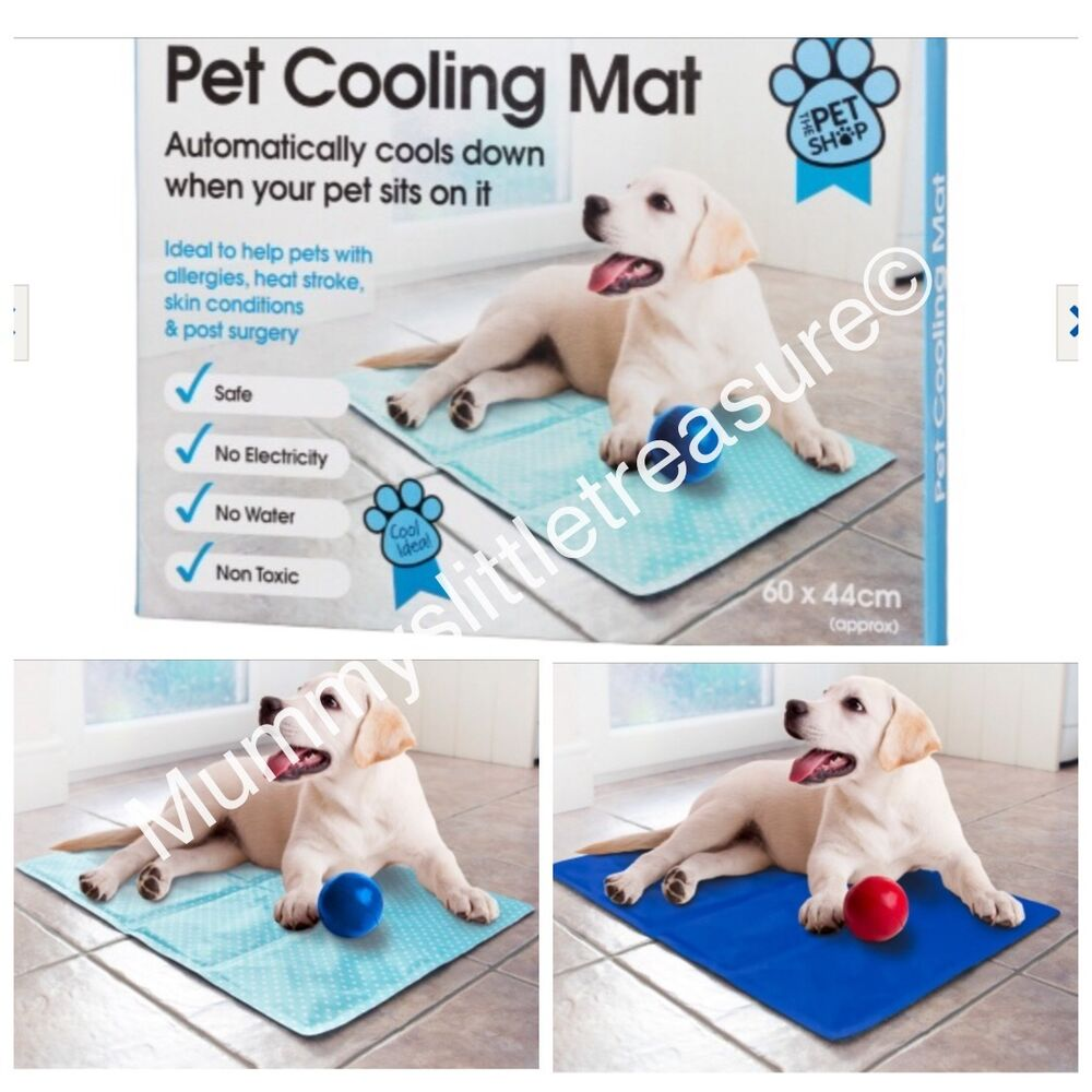 pet cooling cooler mat dog cat summer cool gel 60cm x 44cm. Black Bedroom Furniture Sets. Home Design Ideas