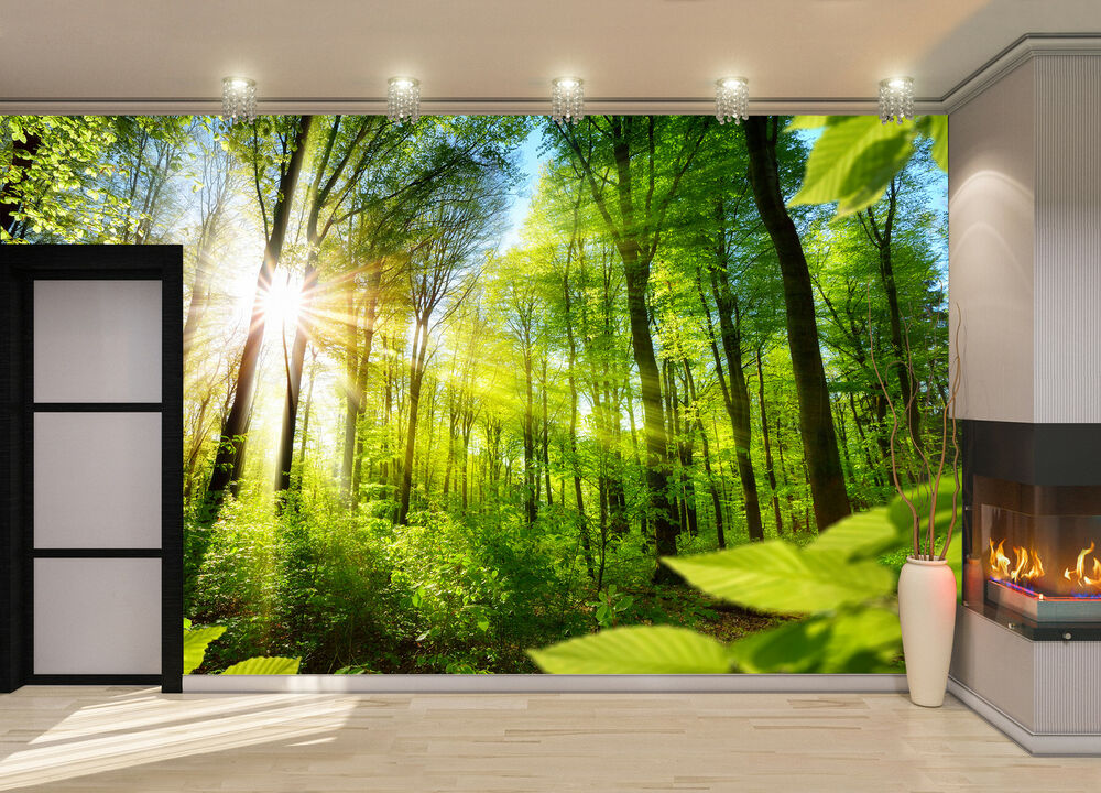 Sunlight ,Forest Wall Mural Photo Wallpaper GIANT DECOR