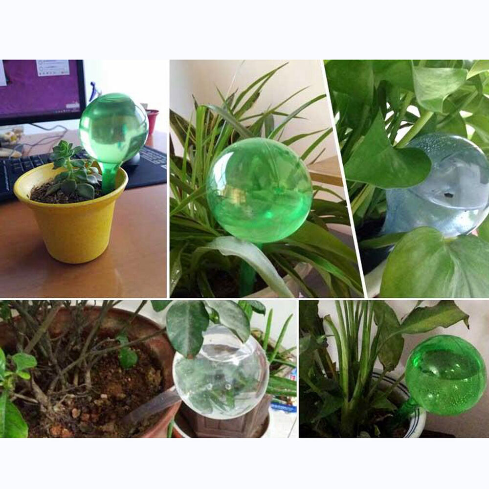 Diy pvc automatic plant watering bulb globe device for Plant waterer