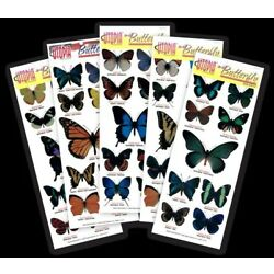 3D Butterfly Stickers Crafts Decorations Wedding Party Stationary Costume Spring