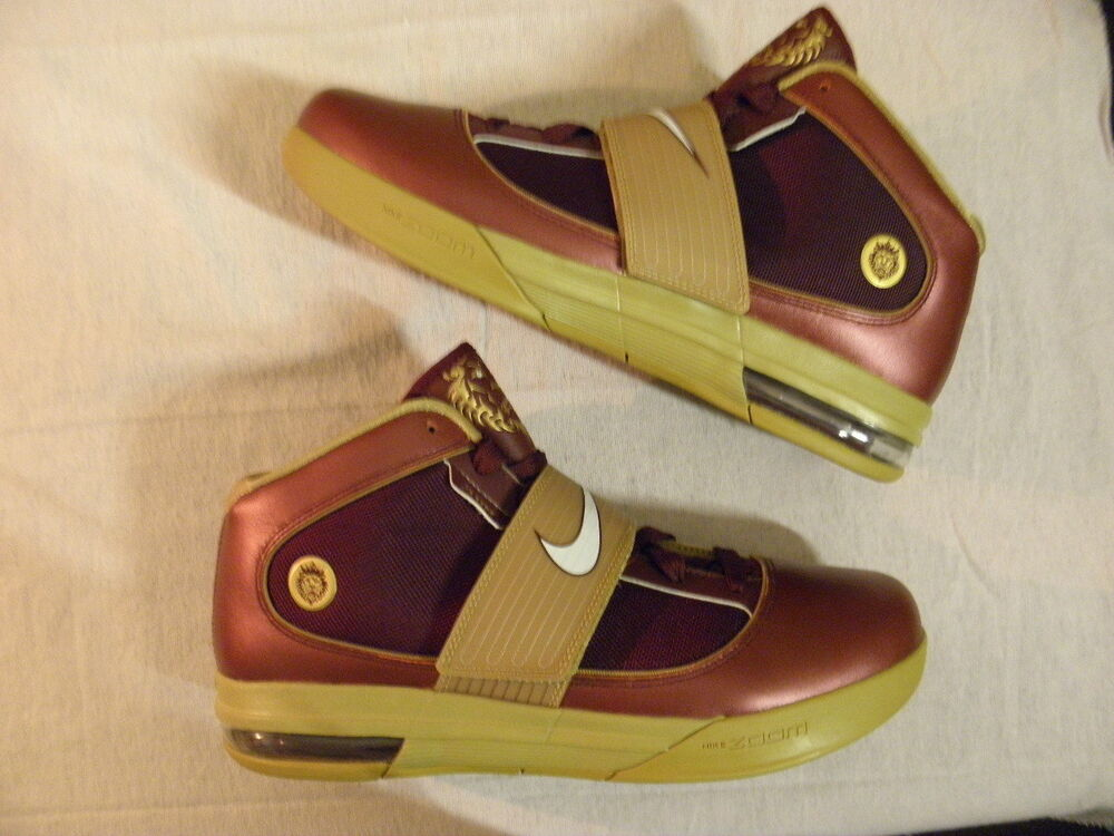 the best attitude 7ddbe cb21c Details about Nike Air Zoom LeBron Soldier 4 IV Christ the King CTK PE  Sample James 11.5 RARE
