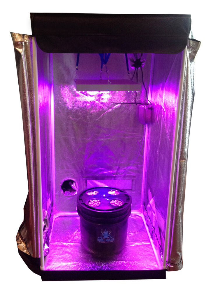 4 Site Dwc Hydroponic System Grow Room Complete Grow Tent Kit Led Grow Light Ebay