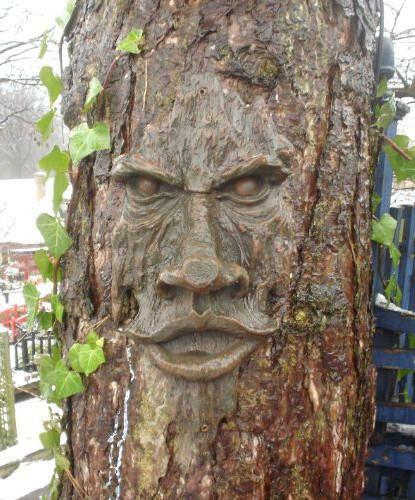 Realistic Tree Face Wooden Carved Mystical Face Garden