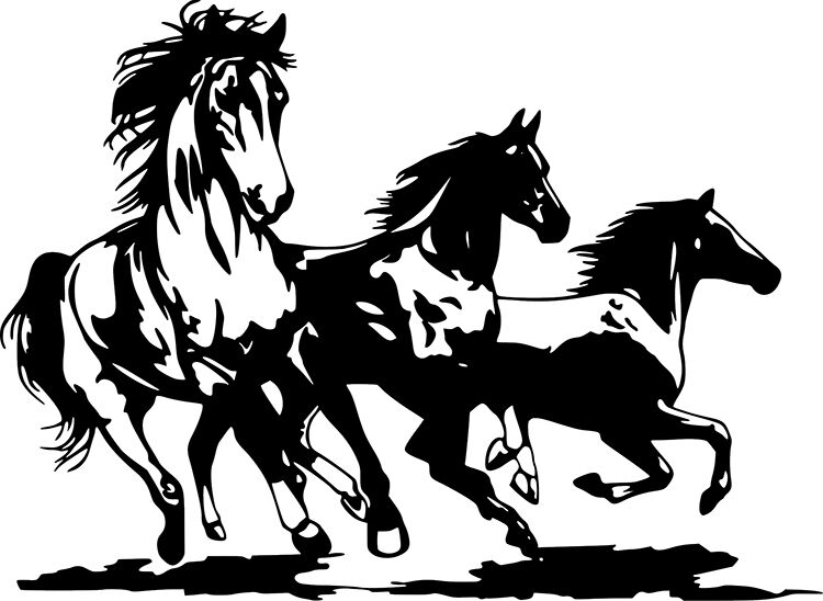 Horses Running Wild Horse Art Decor Wall Car Truck Window Vinyl