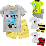 Toddler Boys Kids Summer Clothes Animal T-shirt Tee + Shorts Pants Outfits Set