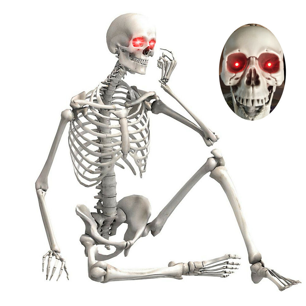 56ft Halloween Life Size Skeleton Human Body Poseable Props Party