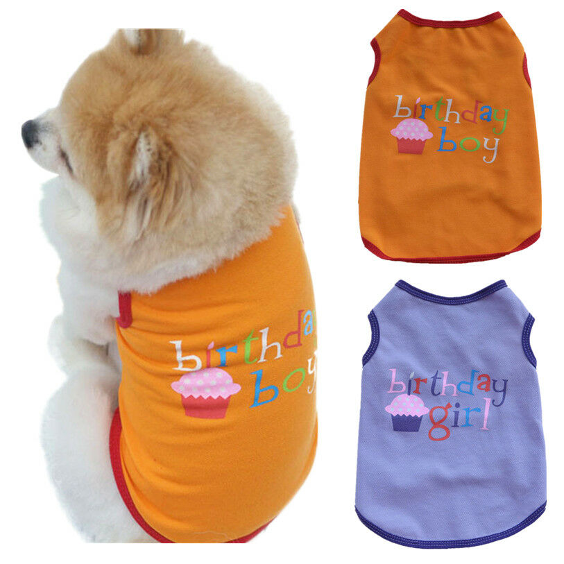 Details About Birthday Girl T Shirt Tee Dogs Pet Tshirt M L Medium Large Party Cake