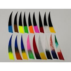 Archery Past 4'' Shield Multi-Colored Feathers - 12 Pack, RW or LW
