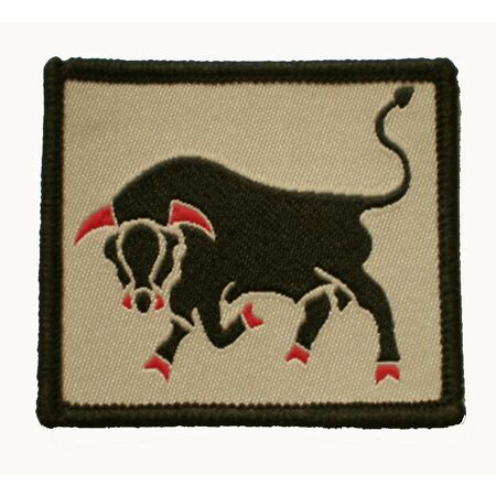 img-11th Infantry Brigade & HQ South East - Tactical Recognition Flash - TRF