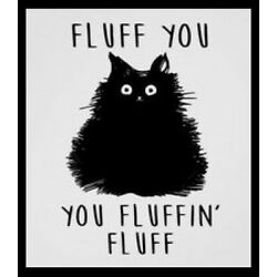 Fluff You Cat You Fluffin' Fluff He's So Rude! Black Kitty Silly Pet Love Paws
