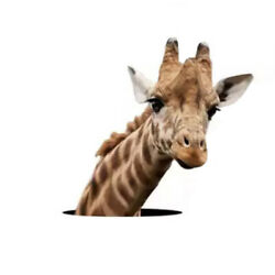 NEW 11.5  x10.5  Realistic Giraffe Popping Up Out Of Wall Laptop Car Vinyl Decal