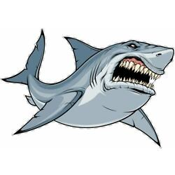 Mean Shark Fish Large Removable Wall Décor Sticker Decal.