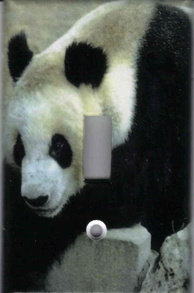 Panda bear panda bear home wall decor single light for Panda bear decor