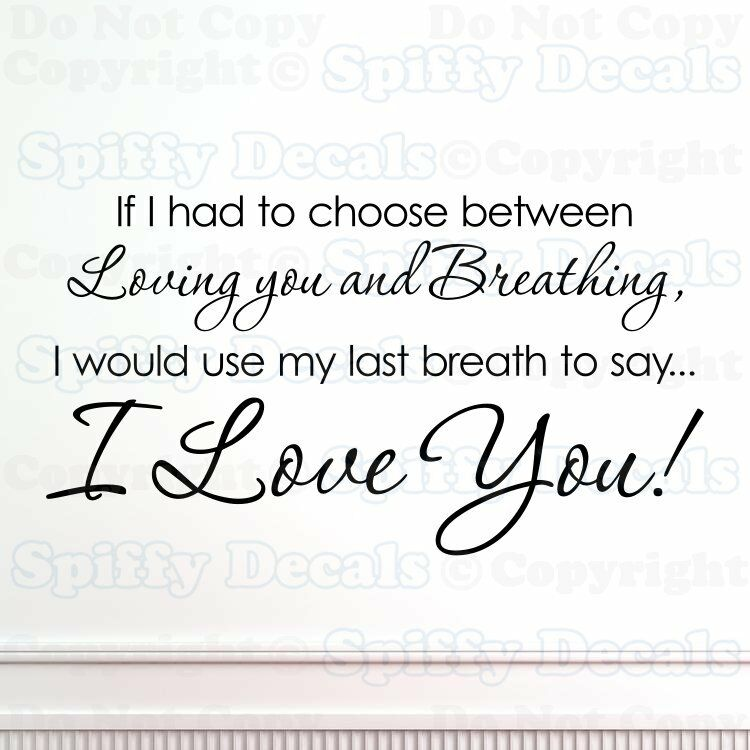 Aerosmith Breathing Quote Vinyl Wall Art Sticker Decal: I LOVE YOU IF I HAD TO CHOOSE BREATHING Quote Vinyl Wall