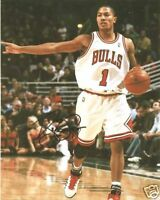 DERRICK ROSE ROOKIE AUTO SIGNED GLOSSY 8 X 10 PHOTO